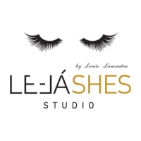 417 5040 Le LaSHES Franchise